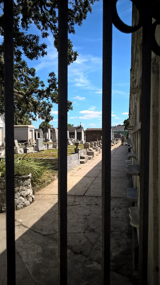 looking through gate bars at cemetery